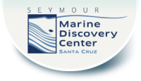 Ocean Explorers Summer Camp Seymour Marine Center