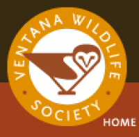 Ventana Wild Life Natural Science Discovery Camp
